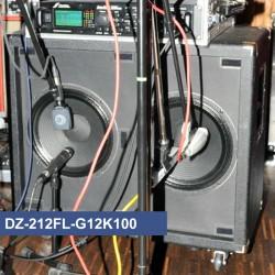 DZ-212FL-G12K100