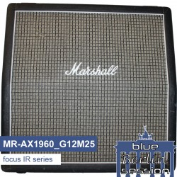 MR-AX1960_G12M25 (Based on a Marshall™ 1960AX)